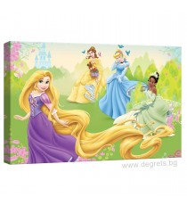 Картина Канава Дисни Принцеси 3