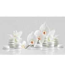 PVC ламперия Орхидея бяла шарка 3D ефект