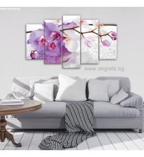 Картина Канава Орхидея капки Сет 5 части