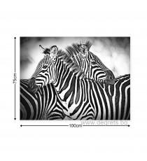 Картина Канава Зебри черно - бели