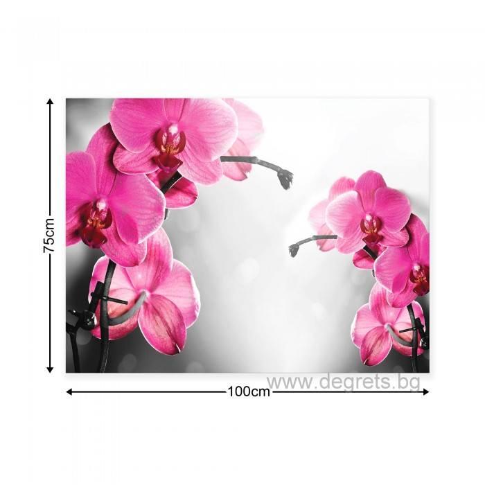 Картина Канава Орхидеи Циклама 1 L