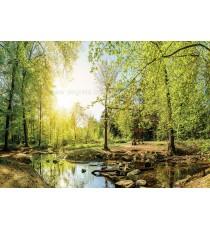 Фототапет Зелена гора