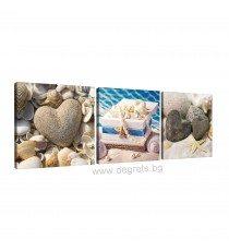 Картина Канава Морско богатство Сет 3 части