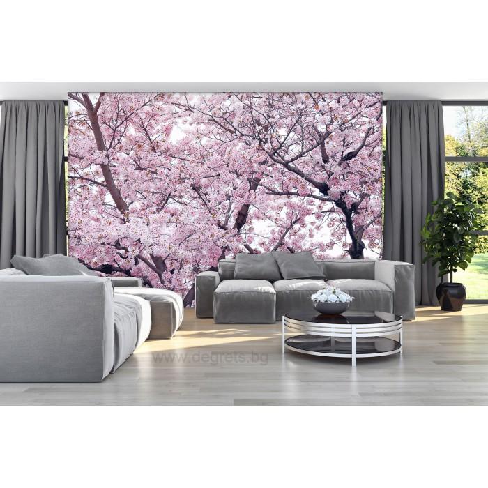 Фототапет Пролетен цвят