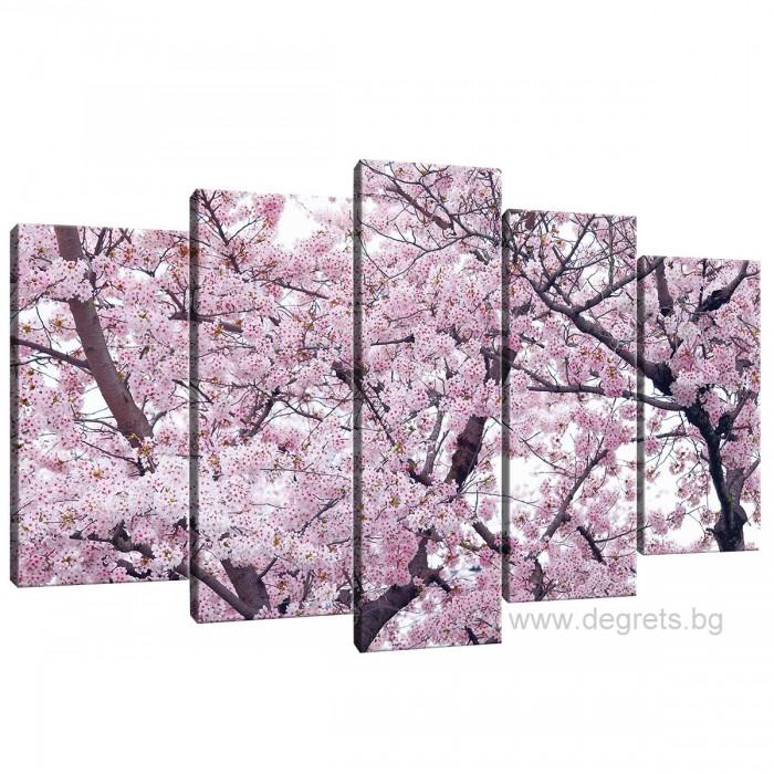 Картина Канава Пролетен цвят 2 Сет 5 части