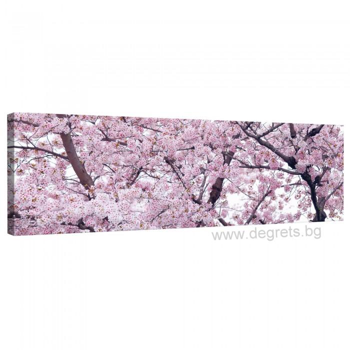 Картина Канава Пролетен цвят 2 XL