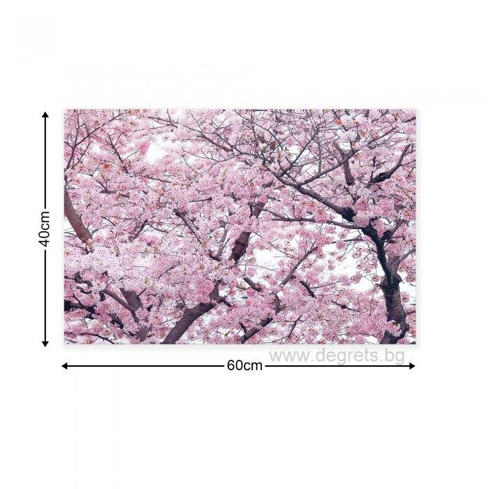 Картина Канава Пролетен цвят 2 S