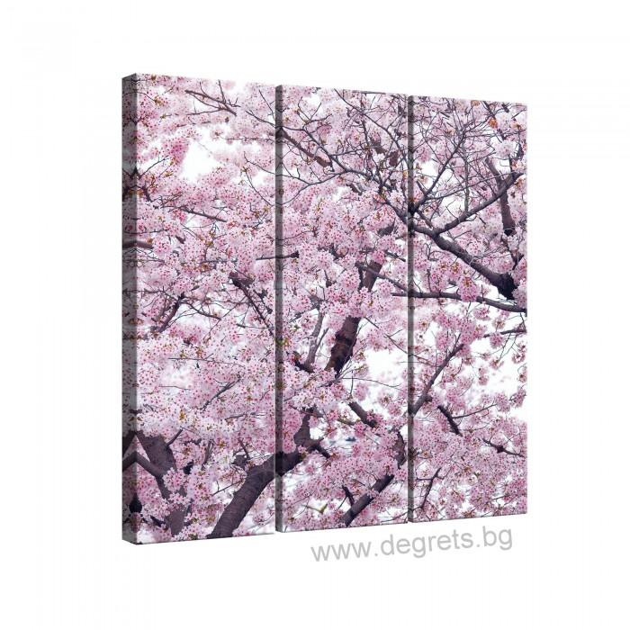 Картина Канава Пролетен цвят 2 Сет 3 части