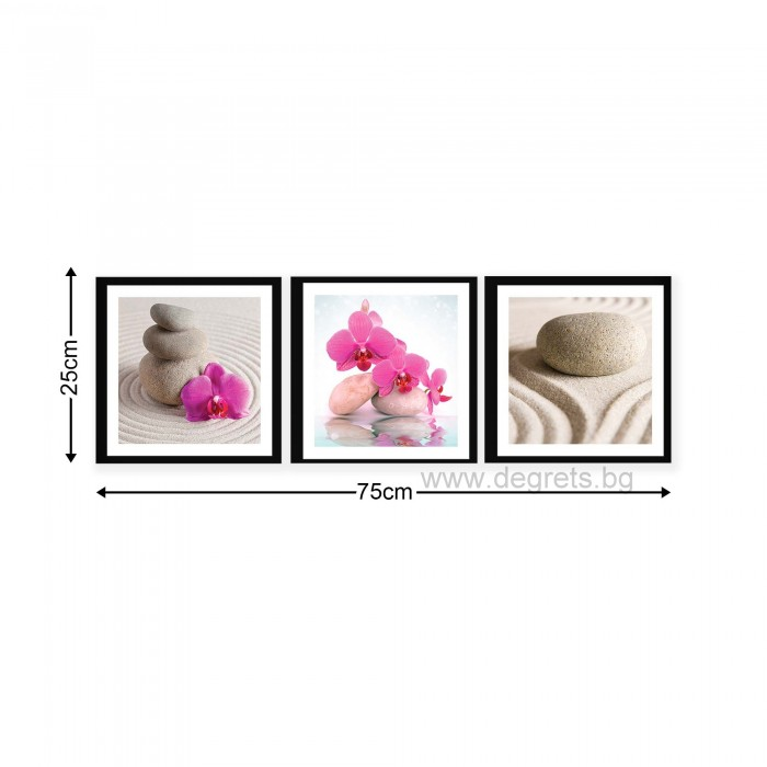 Картина Канава Спа орхидеи 1 Сет 3 части