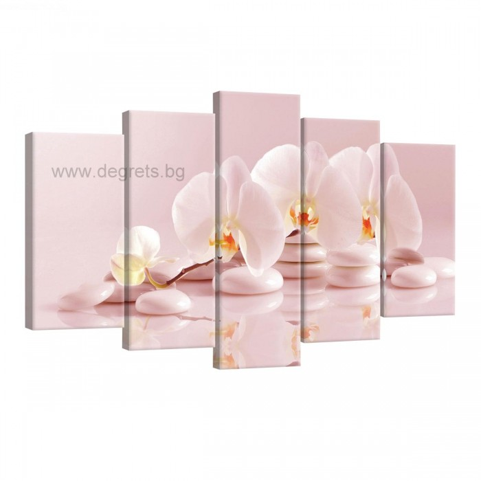 Картина Канава Орхидея 6 Сет 5 части