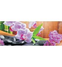 Фототапет флис Орхидеи Дзен 1