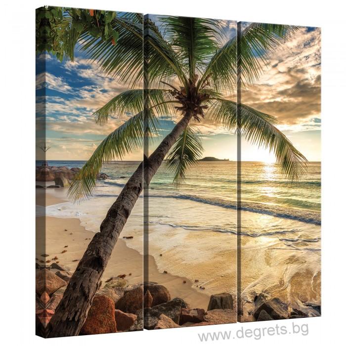Картина Канава Залез в Бахами Сет 3 части