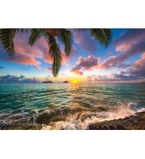 Фототапет Поглед към морето