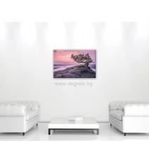 Картина Канава Светът на сънищата 1 S