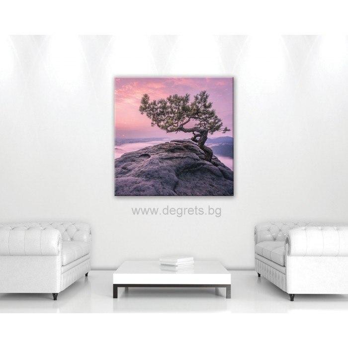 Картина Канава Светът на сънищата 1 М