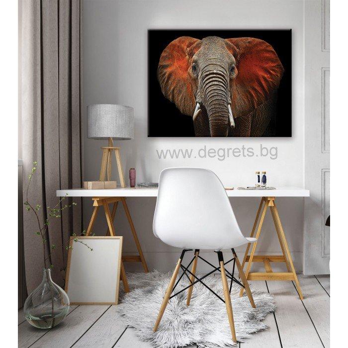 Картина Канава Слон - арт