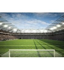 Фототапет Стадион 2 L