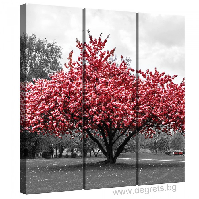 Картина Канава Розов цвят Сет 3 части