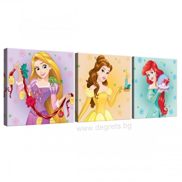 Картина Канава Дисни Принцеси 5 Сет 3 части