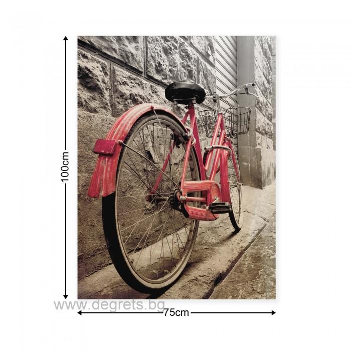 Картина Канава Розово колело