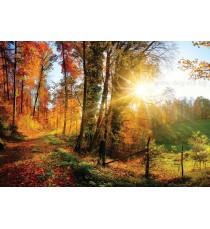 Фототапет Есенна гора 1 L 1
