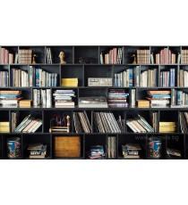 Фототапет Библиотека 2 3D L