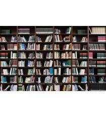 Фототапет Библиотека 3 3D L