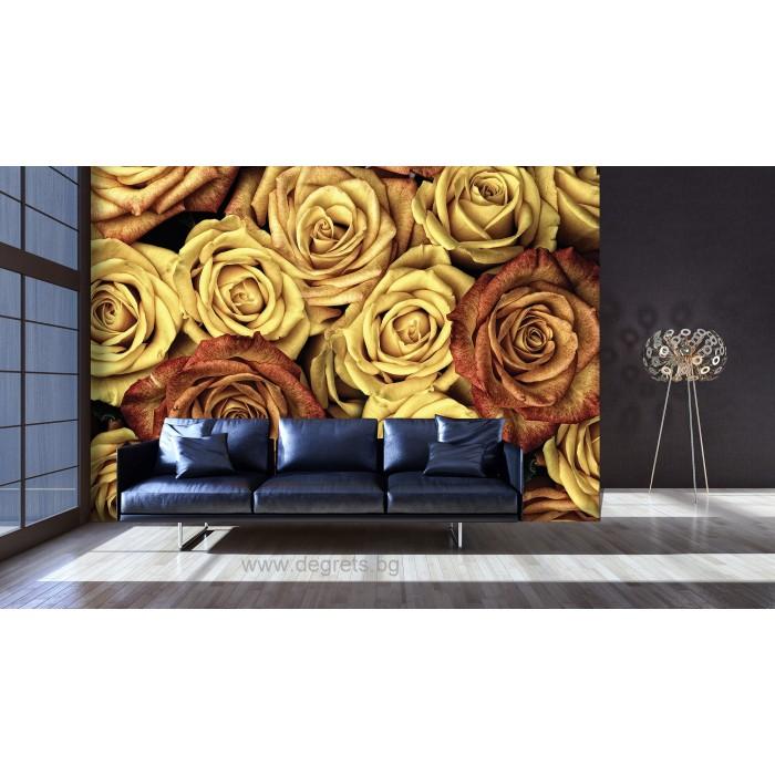 Фототапет Винтидж рози 3D L