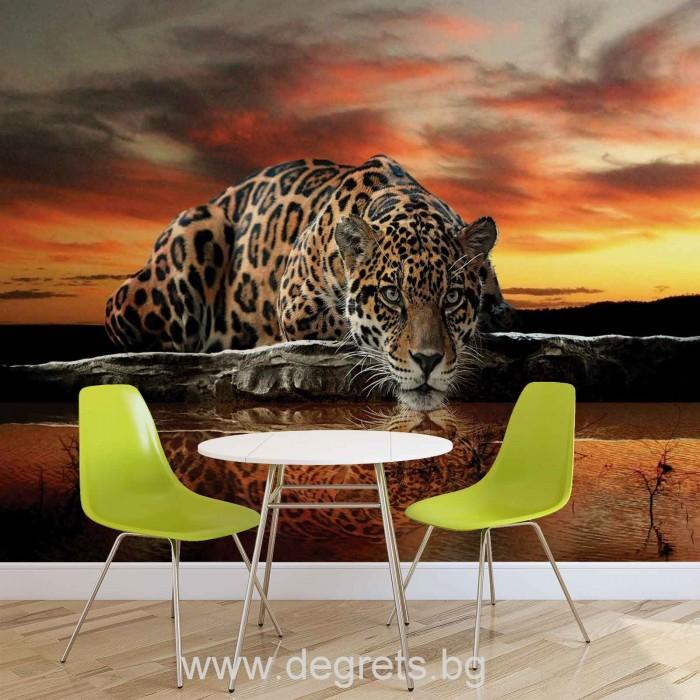 Фототапет Леопард 2