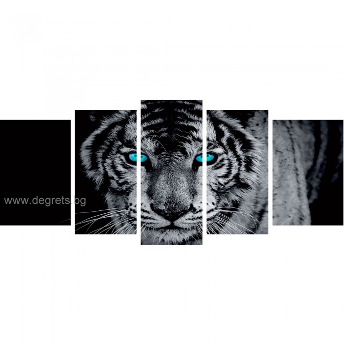 Картина Канава Тигър 1 3D Сет 5 части