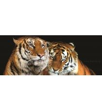 Фототапет флис Тигри