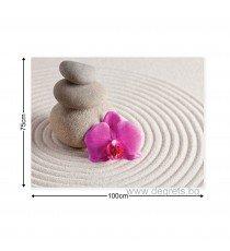 Картина Канава Спа орхидея лилава
