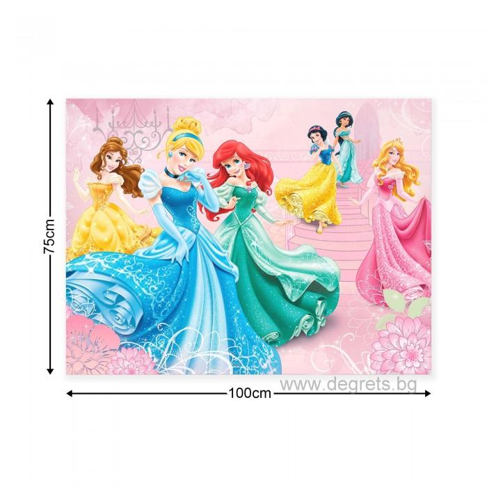 Картина Канава Дисни Принцеси 1