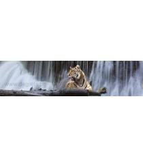 Пано Тигър 1