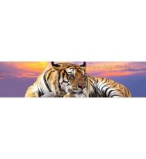 Пано Тигър 2