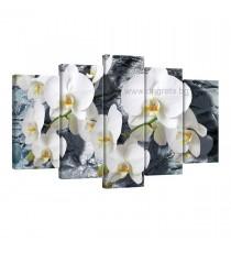 Картина Канава Орхидея 1 Сет 5 части