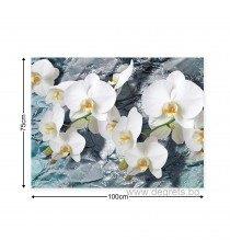 Картина Канава Орхидея 1