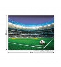 Картина Канава Стадион 1 L