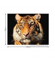 Картина Канава Тигър 2 3D