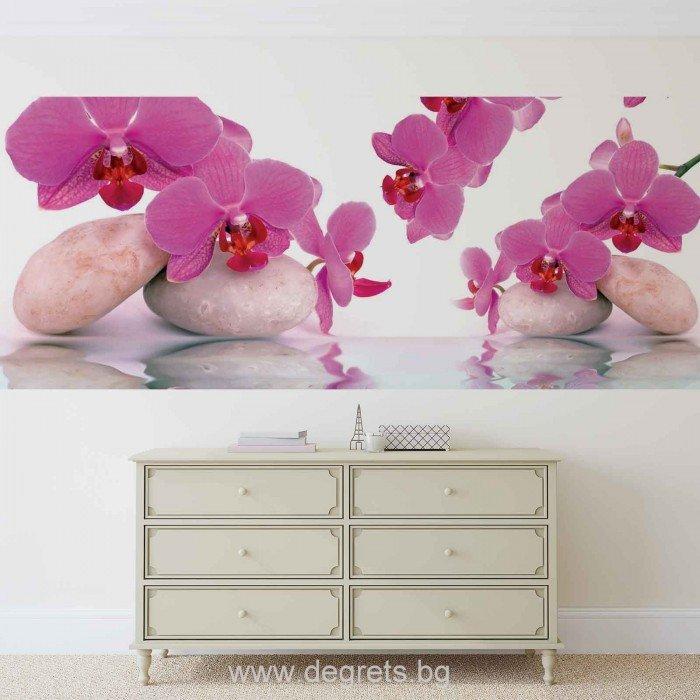 Фототапет флис Орхидеи Дзен 2
