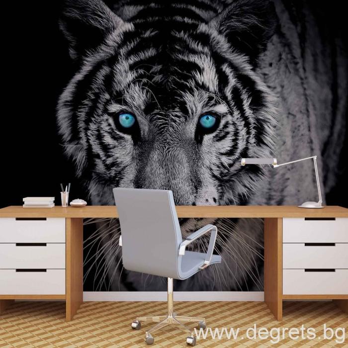 Фототапет Тигър 1 3D