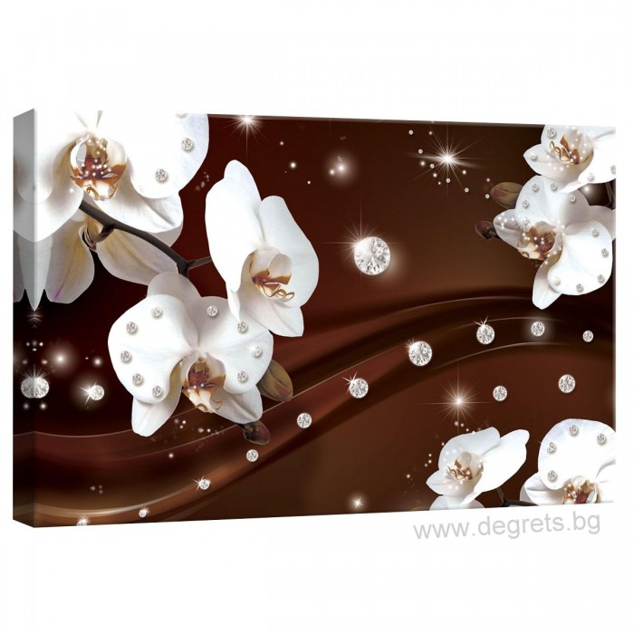 Картина Канава Абстракция Орхидеи 1 3D S