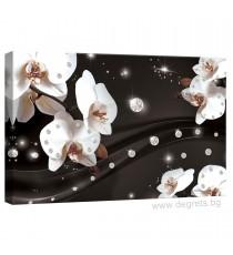 Картина Канава Абстракция Орхидеи 2 3D S