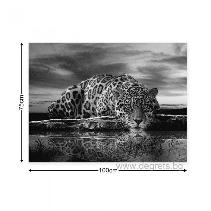 Картина Канава Леопард 1 L