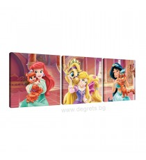 Картина Канава Принцеси - любимци 1 Сет 3 части