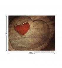 Картина Канава Сърце 1