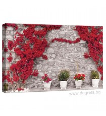 Картина Канава Стена с червени цветя 1 S