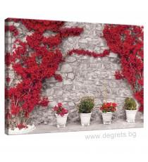 Картина Канава Стена с червени цветя 1 L