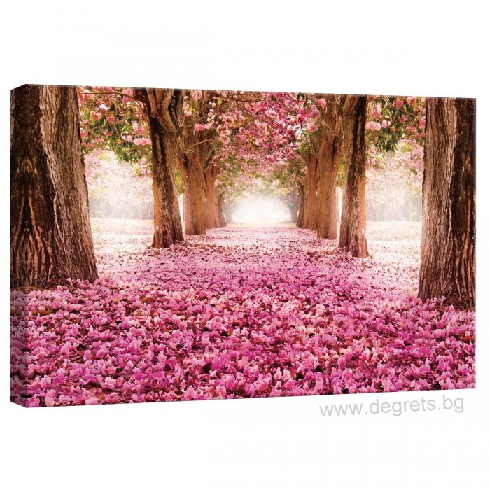 Картина Канава Розова пътека S