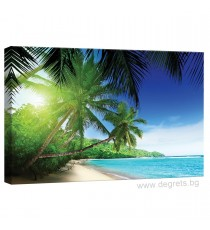 Картина Канава Малдиви 3